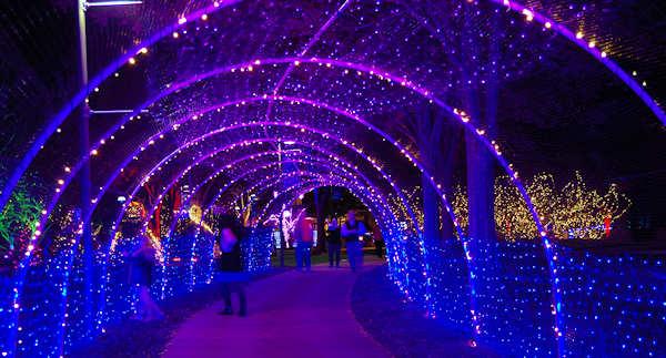 Christmas Arboretum